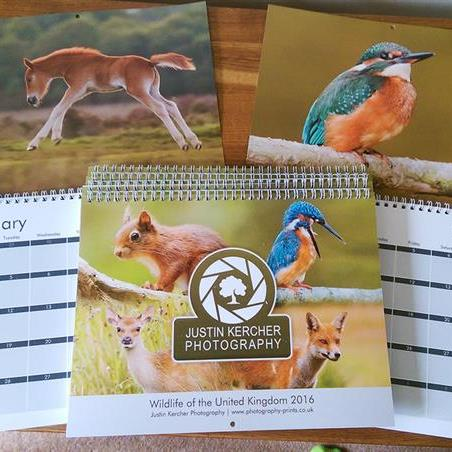 Wildlife Photography Calendar 2016